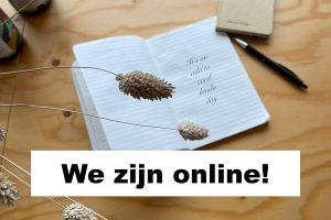 We zijn online