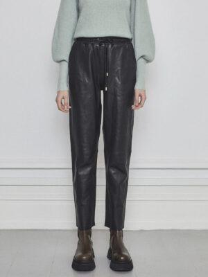 Taz leather pants